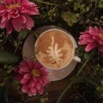 Latte Art leaf