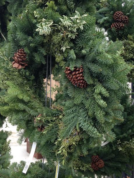 Fresh Live Greens & Christmas Trees!