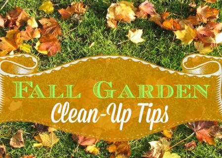 Fall Garden Clean-Up