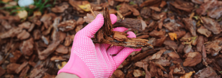 Woman with pink glove holding mulch, recovering her garden from winter.