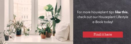 houseplants lifestyle ebook signup