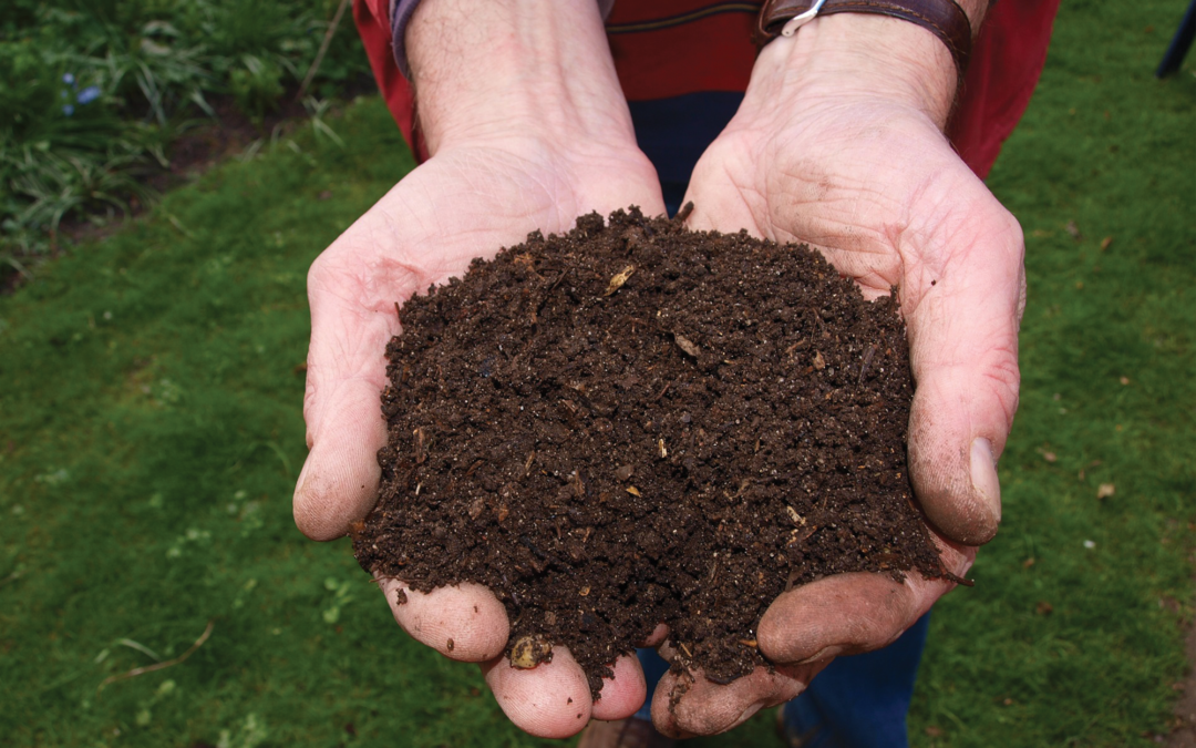 The Basics of Soils and Soil Amendments