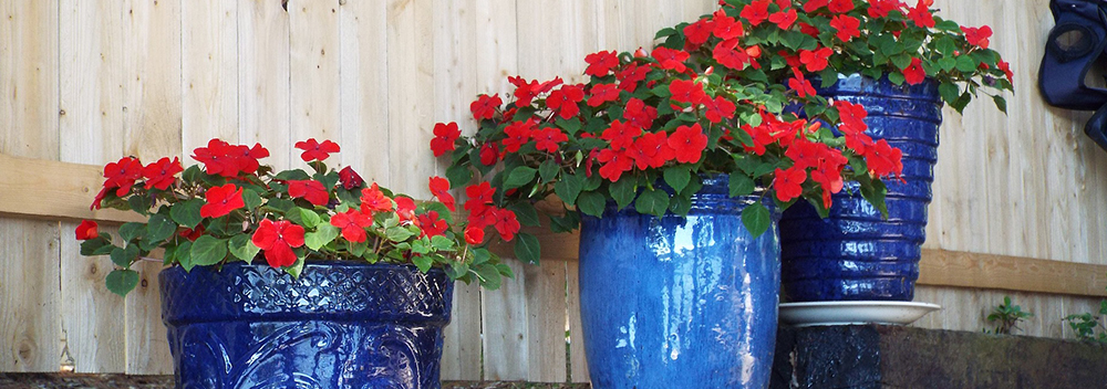 Maintaining Outdoor Containers