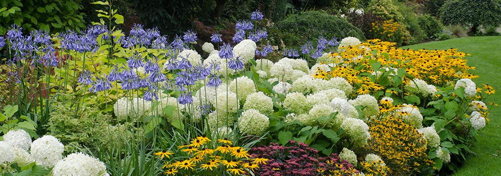 Designing a Perennial Garden or Border